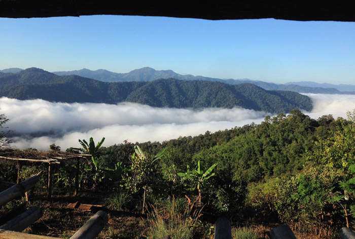 Jungle Trekking - Tailândia