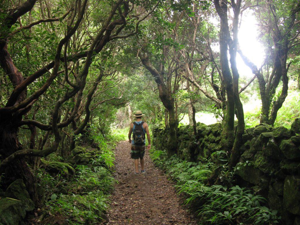 Caminhada nos Açores