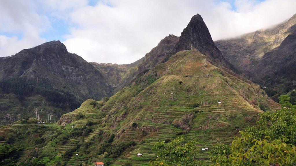 Flora na Madeira