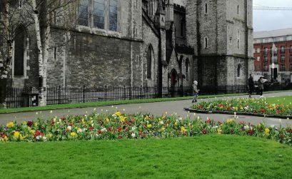 Saint Patrick Cathedral Garden em Dublin
