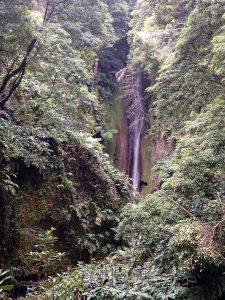 Cascata do jardim José do Canto - Açores